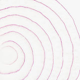 Thinly sliced red onion background Royalty Free Stock Images