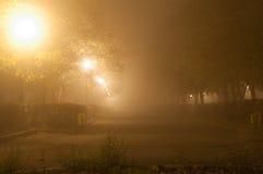 Thiny dimma parkerar in Royaltyfria Bilder