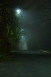 Thiny mgła w parku zdjęcia royalty free