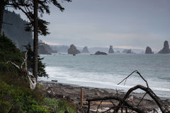 Third Beach at La Push, Washington Royalty Free Stock Photos