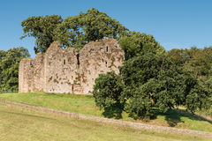 Thirlwall Castle Royalty Free Stock Photos