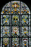 Thiron-Gardais, stained glass Stock Image