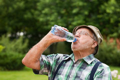 Thirst Royalty Free Stock Photography