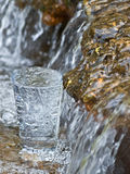 Thirst. Filled glass in the brook Royalty Free Stock Image