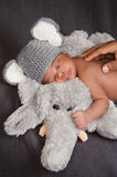 Newborn Baby Boy in Elephant Costume. Thirteen day old newborn baby boy in a grey crocheted elephant hat, sleeping on a plush elephant. His father's hand royalty free stock photos