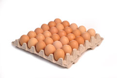 Thirty eggs Royalty Free Stock Photo