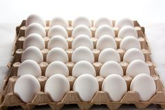 Thirty raw eggs in storage royalty free stock photos