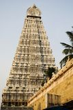 thiruvannamalai виска Тамильского языка shiva nadu Индии стоковое изображение rf