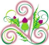 Thistle и кельтская тройчатка Стоковое Изображение