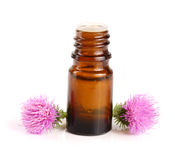 Thistle oil and milk thistle flower isolated on white background Royalty Free Stock Photography