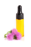 Thistle oil and milk thistle flower  on white background Royalty Free Stock Photo