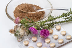 Thistle plant and medicines out of it Royalty Free Stock Images