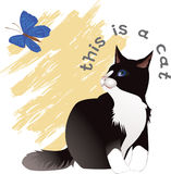 Thit is a cat. Vector file for the cards, design royalty free illustration
