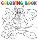 Thème 1 d'écureuil de livre de coloriage Image libre de droits