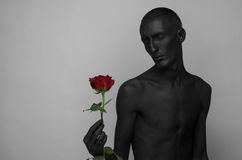 Thème gothique et de Halloween : un homme avec la peau noire tenant une rose rouge, la mort noire d'isolement sur un fond gris da Photos libres de droits