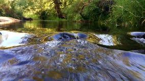 Thomas Creek royalty-vrije stock foto