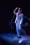 Thomas Dolby Live Royalty Free Stock Photography