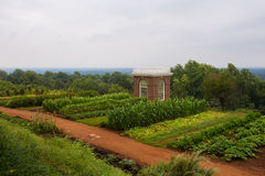 Thomas Jefferson Farm at Monticello. View of hillside garden at Monticello, home of former United States president, Thomas Jefferson Royalty Free Stock Images