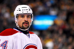 Thomas Plekanec Montreal Canadiens Stock Images
