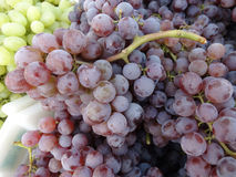 Thomcord grapes Stock Photo