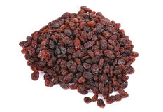 Thompson Raisins Royalty Free Stock Images