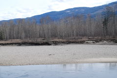 Thompson River BC. Thompson River Near Clearwater BC Stock Photo