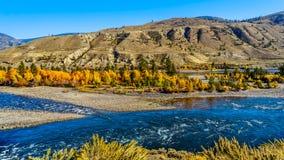 Thompson River bij Spences-Brug in BC Canada stock afbeeldingen