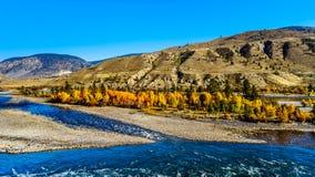 Thompson River an Spences-Brücke in BC Kanada lizenzfreie stockfotos