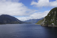 Thompson Sound, New Zealand fiordland Royalty Free Stock Photography