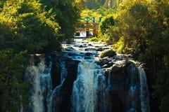 Thomson Falls Royalty Free Stock Photos
