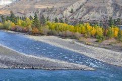 Thomson River in Columbia Britannica, Canada Immagini Stock