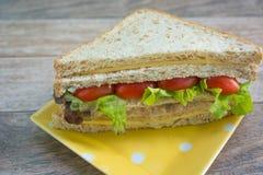 Thon de fromage de sandwich Photographie stock libre de droits