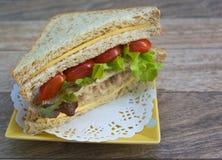 Thon de fromage de sandwich Photos libres de droits