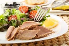 Thon en boîte avec de la salade Image stock