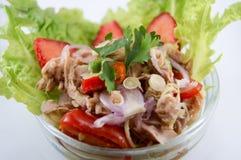 Thon et légume de salade Photo stock