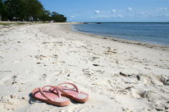 Thongs on the Beach. A pair of pink jandles, thongs or flip flops as they are called on an Australian beach Royalty Free Stock Photography