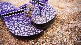 Thongs on the sand. A pair of sandles, known as thongs royalty free stock images