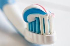 thoothbrush Royaltyfri Bild