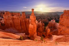 Thor`s Hammer in Bryce Canyon National Park in Utah, USA. A famous hoodoo called `Thor`s Hammer` on a pleasant sunrise in Bryce Canyon National Park in Utah, USA stock image