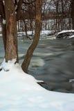 Thornapple flod Arkivfoto