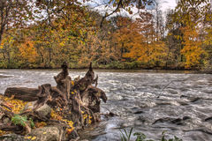 Thornapple River in Alaska, Michigan Royalty Free Stock Photo