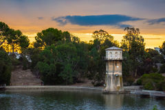 Thorndonpark Adelaide Sunset With Water Tower Stock Afbeeldingen