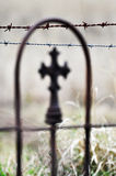 Thorns and the Cross - Death and Life Stock Images