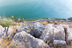 Thorns flowers cliff above asphalt road and lake. Royalty Free Stock Photos
