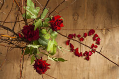 Thorns of love. Still life made from thorns and roses on wooden background royalty free stock photo