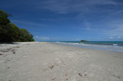 Thornton Beach. Cape Tribulation, Far North Queensland Australia Royalty Free Stock Photos