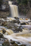 Thornton Force in Yorkshire. Yorkshire's most impressive waterfall after heavy rains, a lone dipper sits upon a rock in front of the falls Stock Image