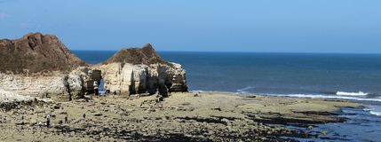 Thornwick bay east yorkshire Royalty Free Stock Photos