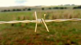 Thorny fence Stock Images
