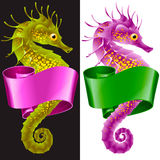 Thorny Seahorse is Wrapped in Swirl Ribbon Stock Image